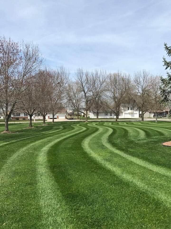Striped Lawn Care